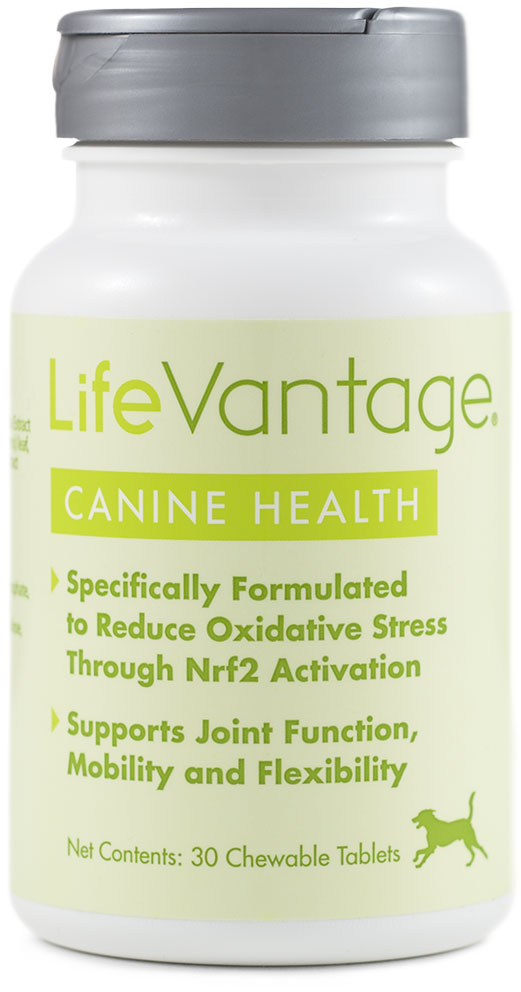 canine health by Lifevantage