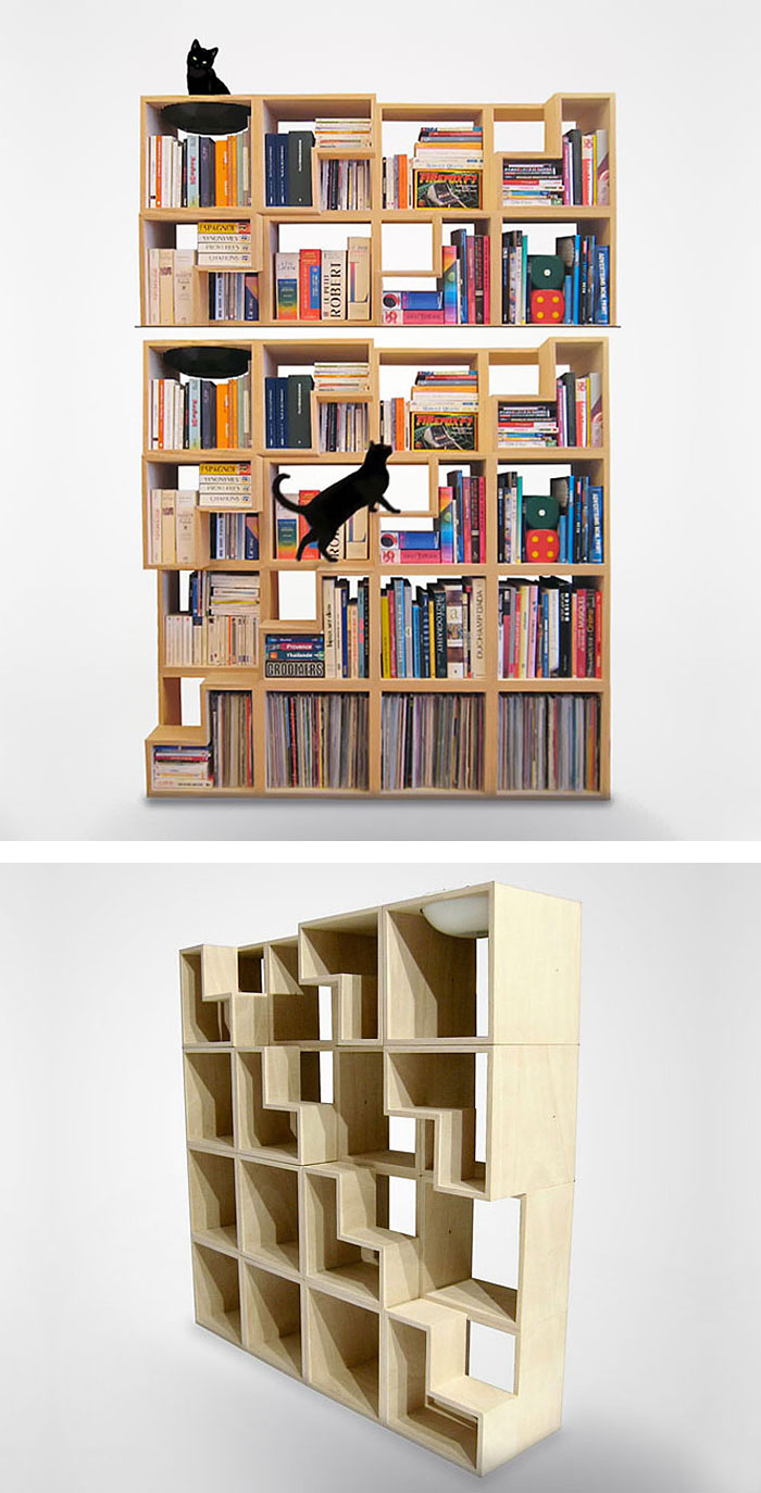 cat bookshelf rbzqoF