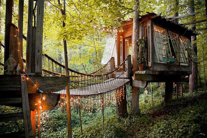 Airbnb Tree House