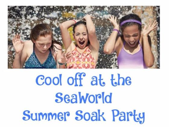 Cool-off-at-the-SeaWorld-Summer-Soak-Party r1nNYS