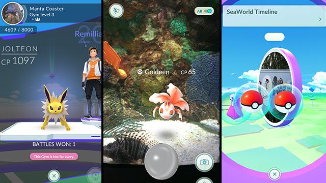 Pokemon balls Seaworld