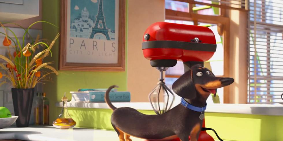 secret life of pets blender massage