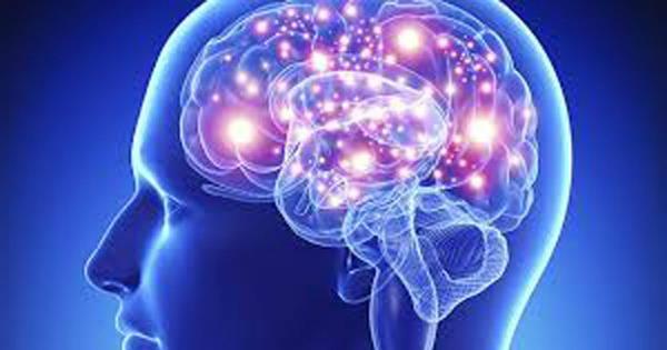 brain-600x315 pufDeO